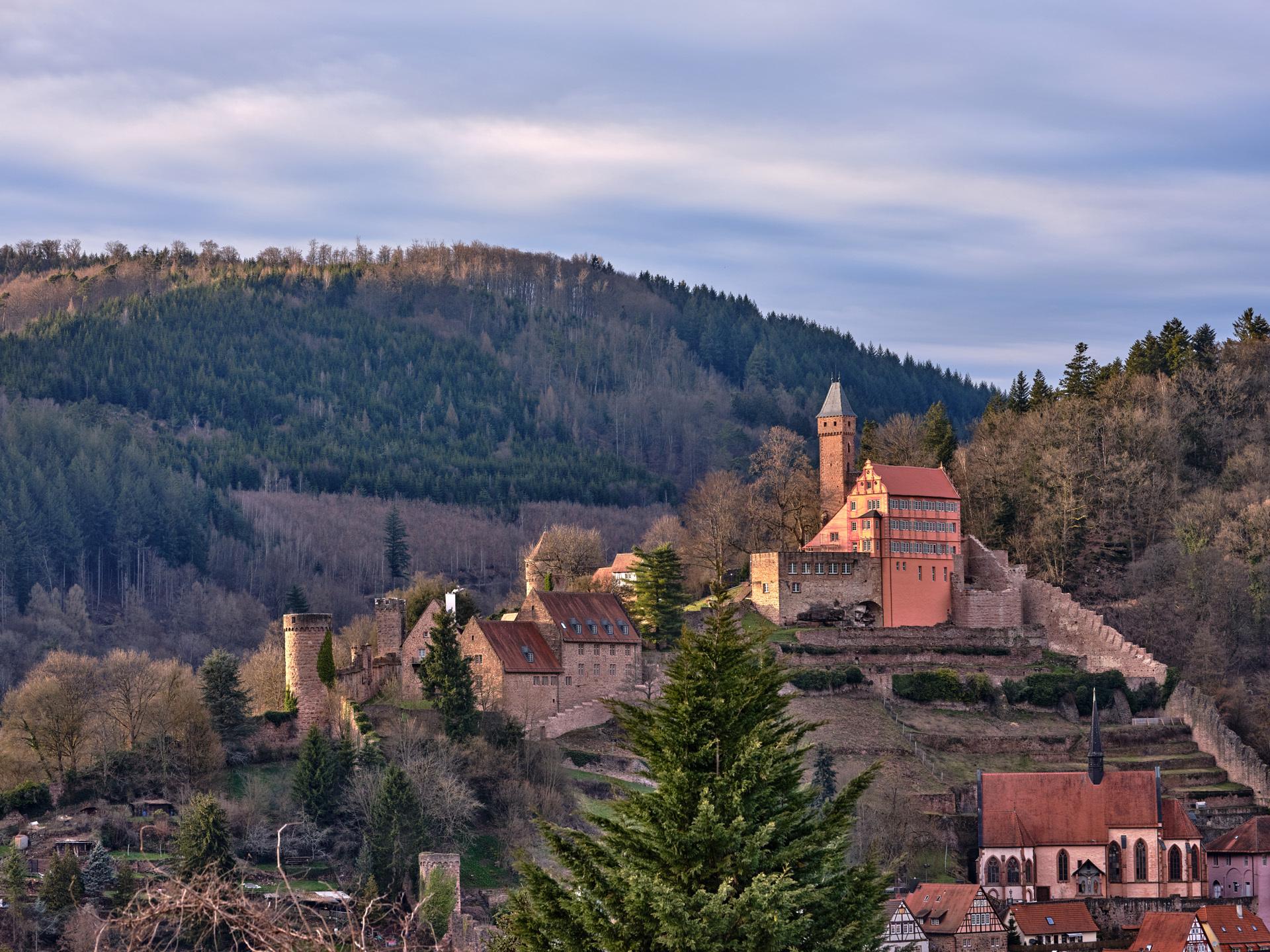 Schloss Hirschhorn, Gesamtansicht