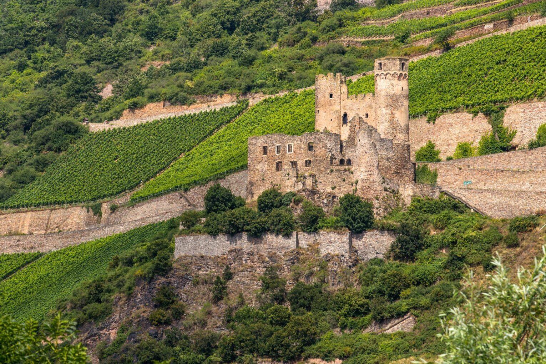 Burgruine Ehrenfels, Blick vom Bingener Rheinufer aus
