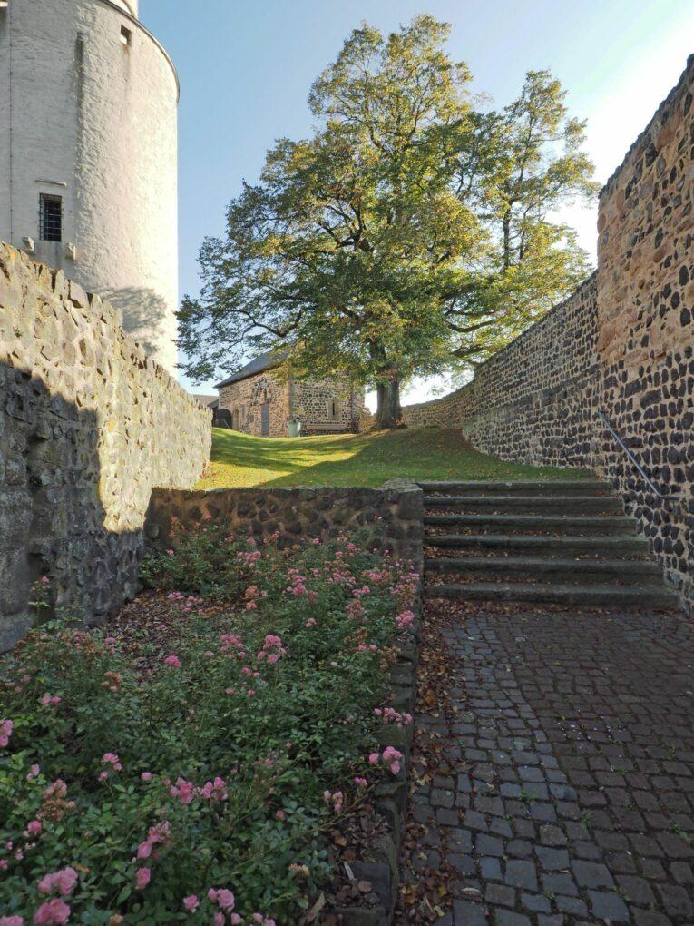 Burgruine Felsberg