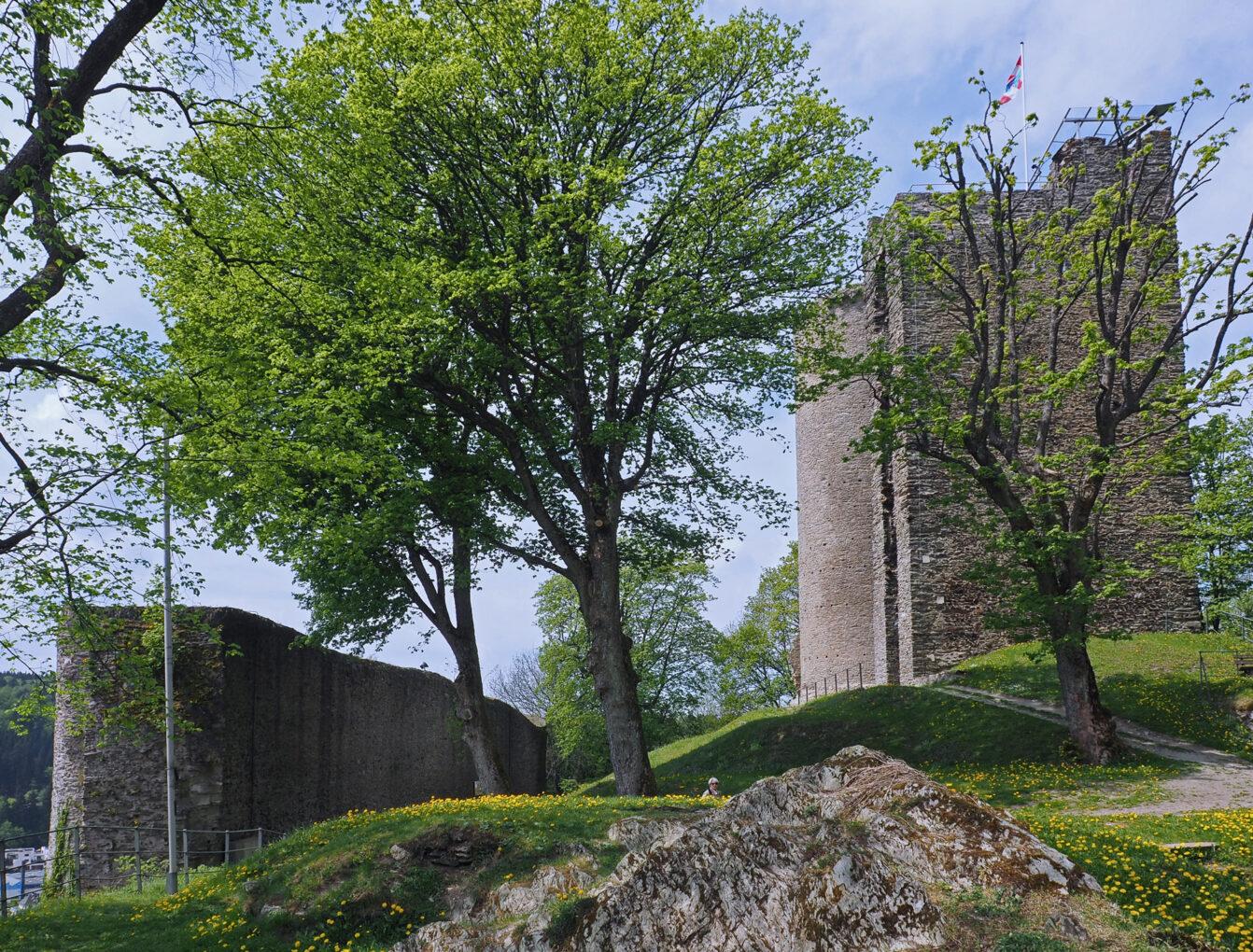 Burgruine Oberreifenberg, Schildmauer mit Wohnturm