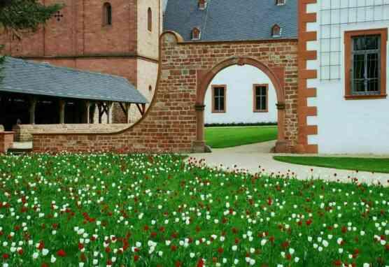 Praelaturgarten mit blühender Blumenwiese