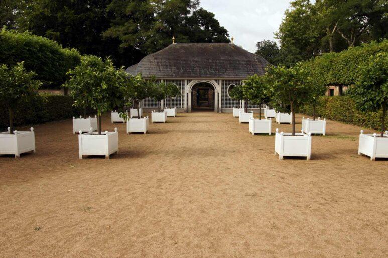 Mehrere Bäume in weißen Kübeln vor dem Teehaus im Prinz-Georg-Garten