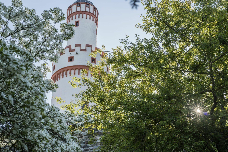 Schloss, Ansicht Turm