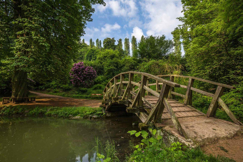 Gebogene Holzbrücke im Staatspark Fürstenlager