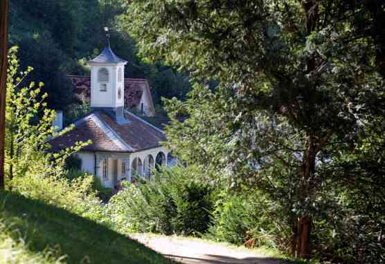 Blick in den Staatspark Fürstenlager