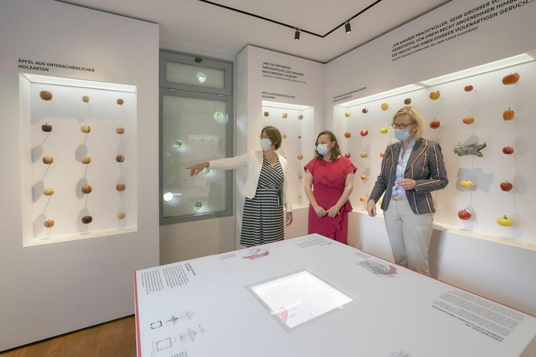 Dr. Inken Formann kuratierte die Ausstellung und erläutert die Highlights der Exponate.